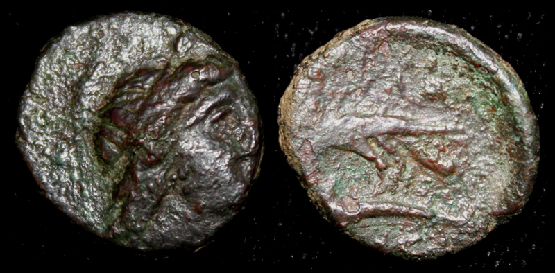 Olbia, Sarmatia city issue, Eagle on Dolphin, c. 180-150 BC