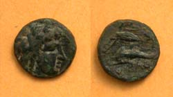 Olbia, Sarmatia City issue, Apollo, dolphin seed & bow, c. 360-320 BC